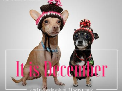 Visual Marketing December
